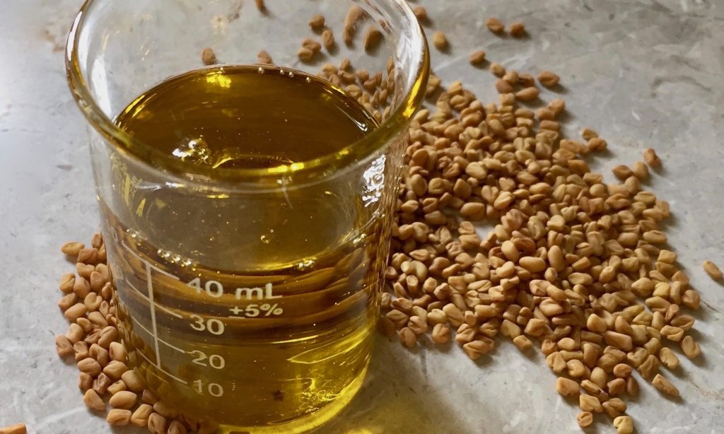 fenugreek oil and seeds