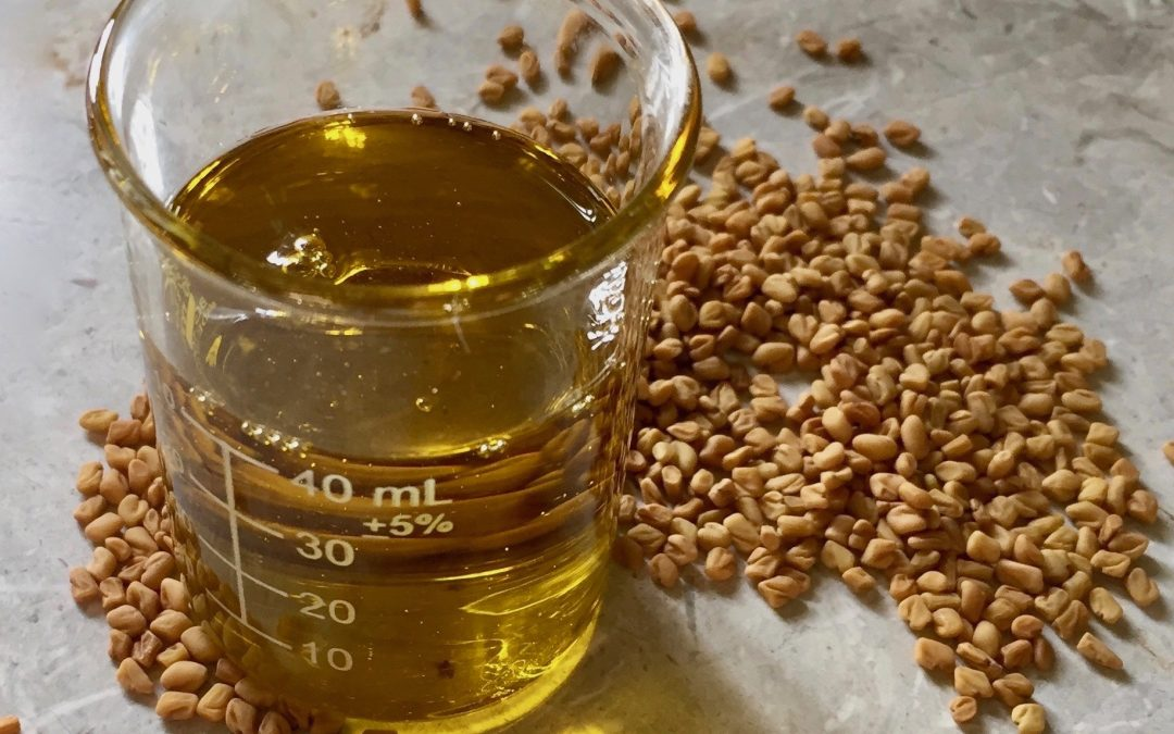 fenugreek oil and seeds