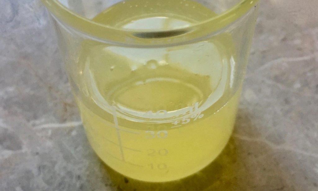moringa oil in beaker