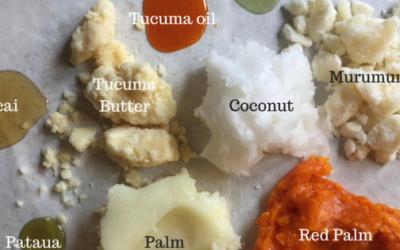 Organizing Oils by Fatty Acid Family