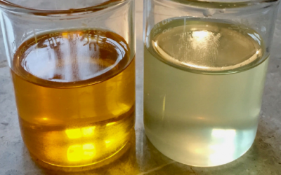 Carrier Oils: What You Need to Know