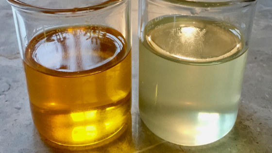 Carrier Oils Defined: How to Select, Use and Store Carrier Oils