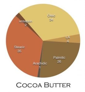 cocoa butter fatty acid profile