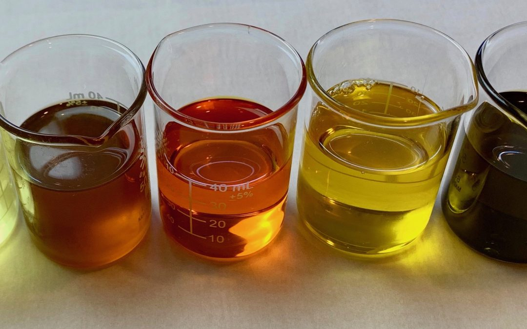 antioxidant skincare oils in beekers
