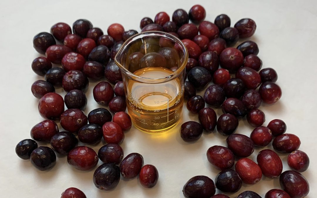 Cranberry Seed Oil & Simple Skincare