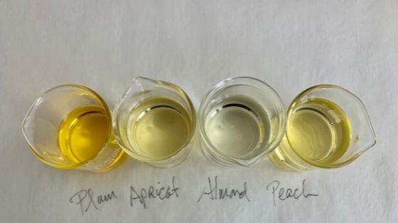 carrier oils in beakers